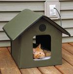 How To Keep Dog Warm Outside In Igloo Dog House